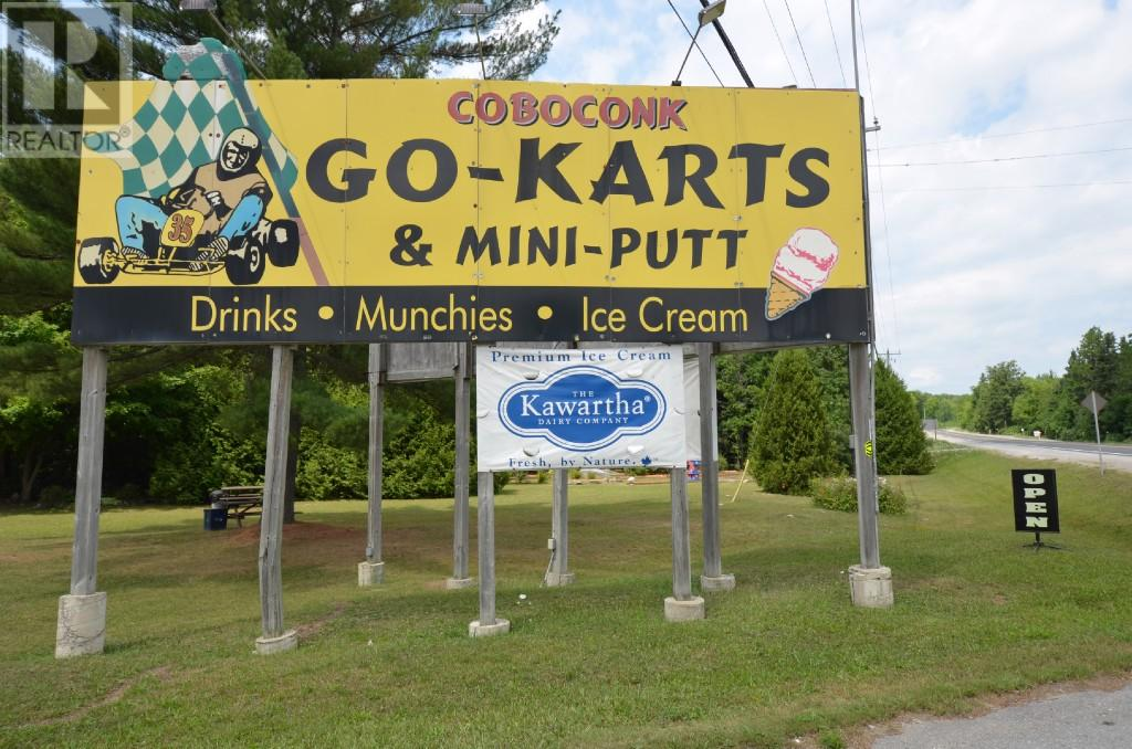 Coboconk Go-Karts & Mini-Putt and Ice-Cream Parlour logo