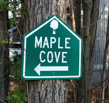 Maple Cove Cottages logo